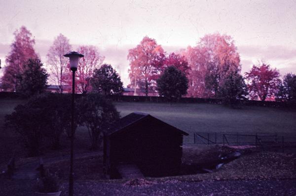 skelleftea-1964-svandammarna04