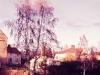 skelleftea-1964-svandammarna203